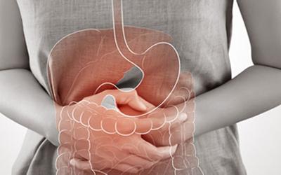 Gastroenterology (Stomach & Colon Specialist)
