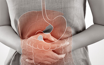 Gastroenterology (Stomach & Colon)